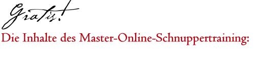 Gratis! Die Inhalte des Master-Online-Schnuppertraining: